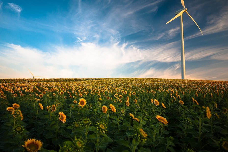 energie bespaartips zakelijk